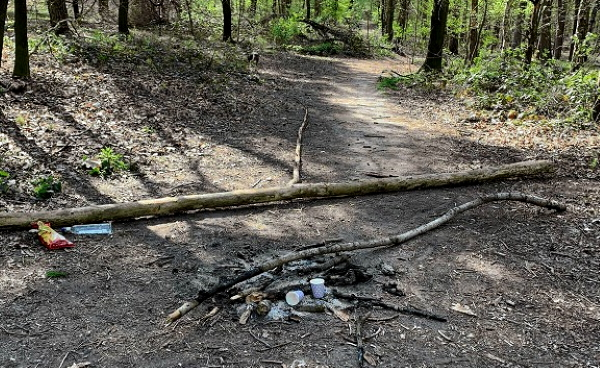Waldbrandgefahr Aktuell